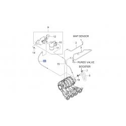 Шланг вакуумный от клапана соленоида к впускному коллектору Авео 1.6 GM