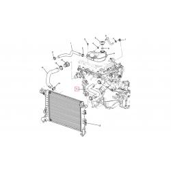 Шланг радіатора підвідний (лівий) Авео T300 АКПП 1.6 LDE GM